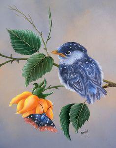 Pa´ssaro - acrílica sobre madeira de Mary Paiva  (Livro de Sherry Nelson - Painting Garden Birds).