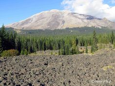 The south face of Mount St. Helens is viewed from the trail as it crosses a small lava flow at Redrock Pass. Photo by Susan Saul.
