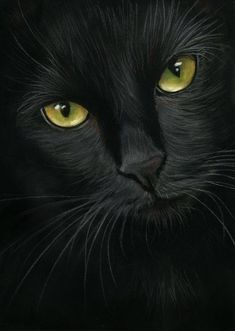 (9) Art&Cat - Black Cat Art - Pinterest Celia Pike