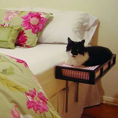 Give kitty his or her own little place in bed with this padded wood sidecar-type bed.
