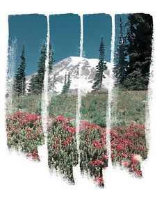 A retro glimpse of Mount Rainer through vertical paint strokes. Paint Strokes, Top Artists, My Design, Digital Art, Mountain, Retro, Abstract, Painting, Summary