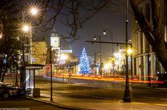 #Bialystok #night #Christmas tree #Choinka