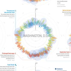 Weather Radials Poster by Raureif