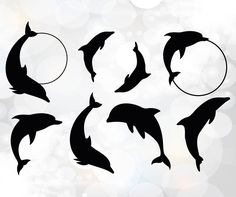 Dolphin Silhouette, Silhouette Png, Silhouette Design, Silhouette Studio, Circle Monogram, Monogram Frame, Butterfly Printable Template, Dolphin Clipart, Dolphins Tattoo