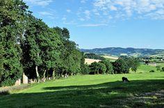 Sur les chemins des Monts du Lyonnais... by Vaxjo, via Flickr
