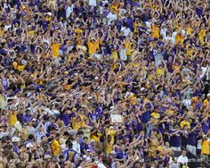 Fans express themselves during #LSU's opening season football game vs. North Texas.