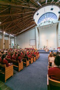 Sacred Heart College is proud to profess and live our Special Catholic Character. We are a small community-based school on Napier Hill with panoramic views. Sacred Heart, Catholic, College, Study, Table Decorations, Learning, School, University, Studio