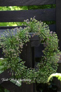 Diy Garden Decor, Flower Arrangements, Diy And Crafts, Creative, Flowers, Plants, Inspiration, Spring Wreaths, Showroom