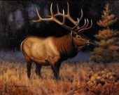 """September Morn - """"The crisp morning awakens with the first light of dawn. A solitary elk, in all his glory, allows us this moment.""""  Framed: No Size: 9 x 12 Medium: Oil on Board"""