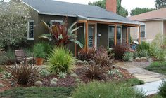 Free Designs With Plant Lists 2 | San Diego County Water Authority Turf Replacement Program