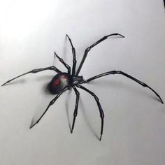 Black widow spider tattoo ske… | Tattoo Art / Sketches ...