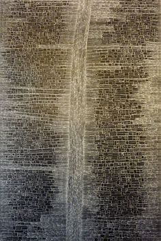 Dorothy Robinson Napangardi - Mina Mina, 2011. This work depicts Mina Mina, an important women's ceremonial site located to the west of Yuendumu. This work depicts patterns of encrusted salt formed due to the soakage areas that characterise this area.