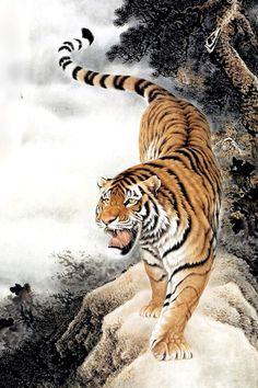 Tiger Tiger Sketch, Tiger Drawing, Tiger Painting, Tiger Art, Big Cats Art, Cat Art, Korean Art, Asian Art, Animal Paintings