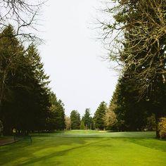 Down the fairway at Oakbrook Golf Club, Lakewood, WA.