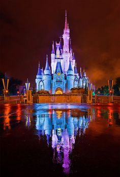 Walt Disney World - Kiss Goodnight Reflection. It's difficult to be unhappy here!