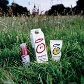 Green Business: Innocent Drinks - Green Living - The Ecologist Smoothie Company, Innocent Drinks, Green Business, Three Friends, Healthy Drinks, Lemonade, Coca Cola, How To Find Out, Branding