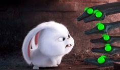 Wieshawn Jones - the secret life of pets pic: Full HD Pictures - px Baby Movie, Pets Movie, Cute Disney Wallpaper, Cute Cartoon Wallpapers, Snowball Rabbit, Pet Pug, Cute Bunny Cartoon, Pet Cemetery, Secret Life Of Pets