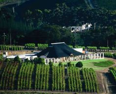 Bouchard Finlayson | Hermanus Wine Route R320