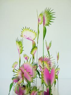 Isn´t this gorgeous? Fleurs Carnivore, Lyndie Dourthe