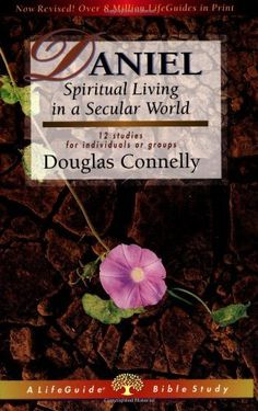 Daniel: Spiritual Living in a Secular World (Lifeguide Bible Studies) by Douglas Connelly, http://www.amazon.com/dp/0830830316/ref=cm_sw_r_pi_dp_QvKerb1MQGZA1
