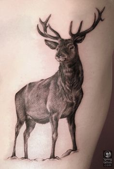 B&g tattoos by Aviv   Spring tattoo