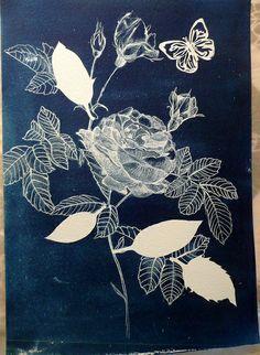 Rosy cyanotype print by Heulwen