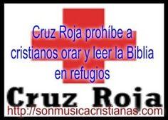Cruz Roja prohíbe a cristianos orar y leer la Biblia en refugios – Noticias…