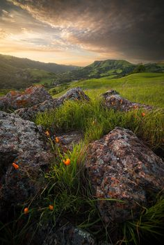 © Steven Davis Photo Sunol,sunset