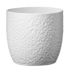 Boston Round Ceramic White Plant pot - B&Q for all your home and garden supplies and advice on all the latest DIY trends White Ceramic Planter, Ceramic Plant Pots, Clay Pots, Boston, Garden Mall, White Pot, Pot Plante, White Plants, Perfect Plants