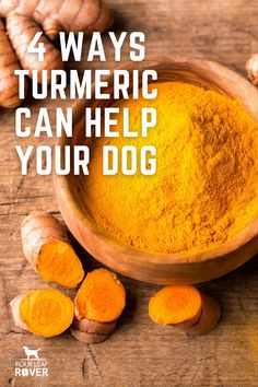 Curcumin Benefits, Meds For Dogs, Dog Nutrition, Cancer Fighting Foods, Natural Supplements, Cat Stuff, Shih Tzu, Turmeric