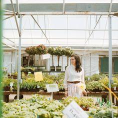 Greenhouse Portraits by Miesh Photography Image Emotion, Graduation Photos, Photo Ideas, Portraits, Wreaths, Table Decorations, Flowers, Photography, Home Decor