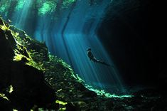 National Geographic フォトコンテスト2013 >「ジャングルの林冠にぽっかり開いた穴から陽光が燦々と降り注いで洞窟に広がってゆく。これが起こるのは1日の本当に限られた時間だけだ。光のカーテンが水中でゆらゆら踊る様が見れる、マジカルな時間。大きさの目安として素潜りのダイバーに泳いでもらった」写真・解説:Aaron Wong/National Geographic Photo Contest