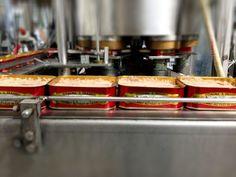 Coalma Sant'Erasmo canned Bluefin #tuna production. Eat it and enjoy!