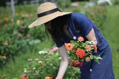 Someday I will have my own large flower garden and I will pick fresh flowers for my home and my friends! ;) Stock and Zinnias are at the top of the list...