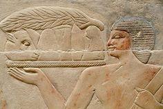 Sakkara, Tomb of Kagmeni, Ancien Egypt, Dynasty. Ancient Egypt History, Ancient Egyptian Art, Kemet Egypt, Visit Egypt, Historical Artifacts, Memphis, Statues, Ancient Civilizations, Archaeology
