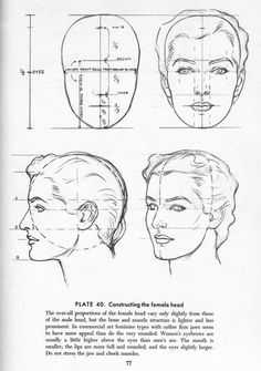 proportion guide for how to draw the female head. from the book Drawing the Head and Hands by Andrew Loomis. #retro #woman