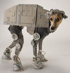 best dog costume ever