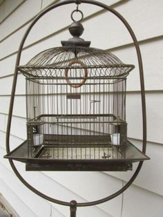 Antique Brass Hendryx Bird Cage with Stand Victorian Early Glass Feeders Antique Bird Cages, Antique Brass, Bird Cage Stand, The Caged Bird Sings, Bird Houses, Wicker Baskets, Bird Feeders, Pet Birds, Birdcages