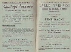 9 (Augustus17) Tags: italy italia marche 1907 ascolicomera bachicoltura cesaremariotti coniugivassura grandemagazzenomodenovità libreriapierucci paginepubblicitarie tarlazzigallo