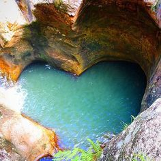 Abseil down this heart-shaped natural pool in Killarney Glen in Lower Beechmont.