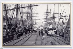 Tall Ships, Amazing Places, Genealogy, Sailing Ships, New Zealand, The Good Place, Boats, Cathedral, Sea