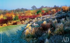 Степной сад в усадьбе Lady Farm в окрестностях Бристоля   Admagazine   AD Magazine