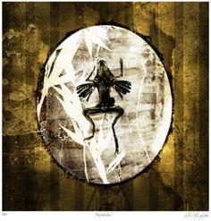 Amphibider - Vincent Marcone (My Pet Skeleton)