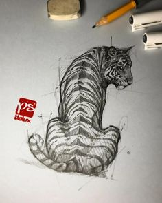 Psdelux is a pencil sketch artist based in Tatabánya, Hungary. He usually draws animal sketches. Psdelux also makes digital drawings. Animal Sketches, Art Drawings Sketches, Animal Drawings, Cool Drawings, Pencil Sketches Of Nature, Pencil Sketching, Animal Illustrations, Cool Sketches, Realistic Drawings