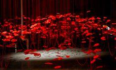 Beili Liu red and black