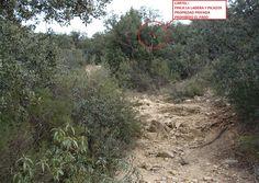 SENDA ILEGAL ESTEPAR-PEÑA DEL BÚHO. Señalización bajo la Peña del Búho, y signos crecientes de erosión (foto sacada de una página de Senderismo).