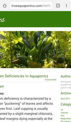 Aquaponics Deficiency Guide