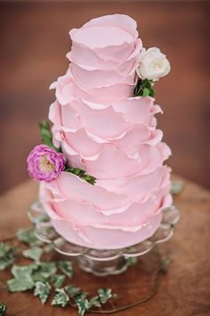 pink wedding cake - photo by Hanna Photography http://ruffledblog.com/language-of-flowers-wedding-editorial #weddingcake #cakes