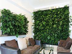 壁面緑化とは