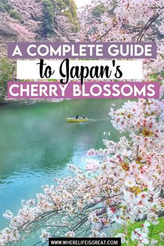 If you ever wondered when is the best time to visit Japan, make no mistake! Cherry blossom in Japan makes it the most stunning place on Earth! Cherry Blossom Japan, Cherry Blossoms, Japan Travel Guide, Asia Travel, Best Places To Travel, Places To Visit, Japan Spring, Tokyo, Visit Japan